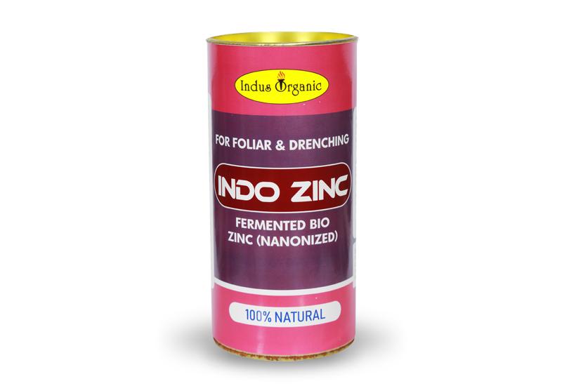 Indo Zinc